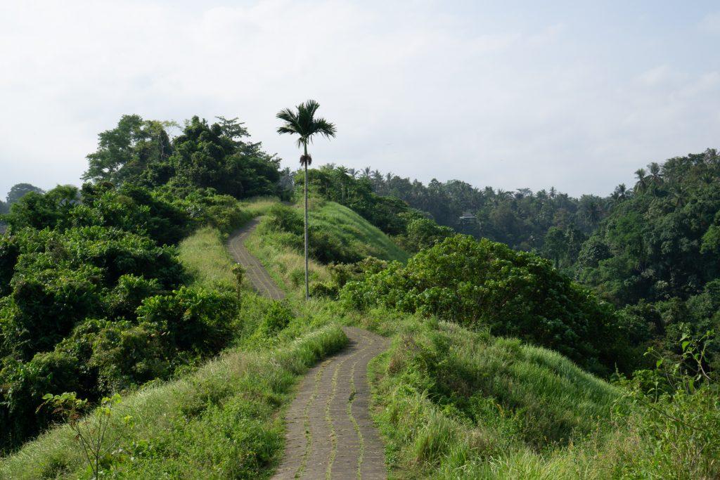 Ridge Walk Bali