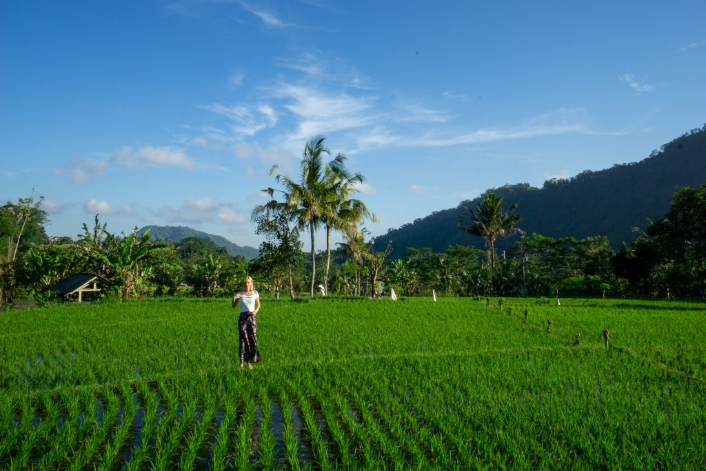 Sidemen Rice Fields Bali