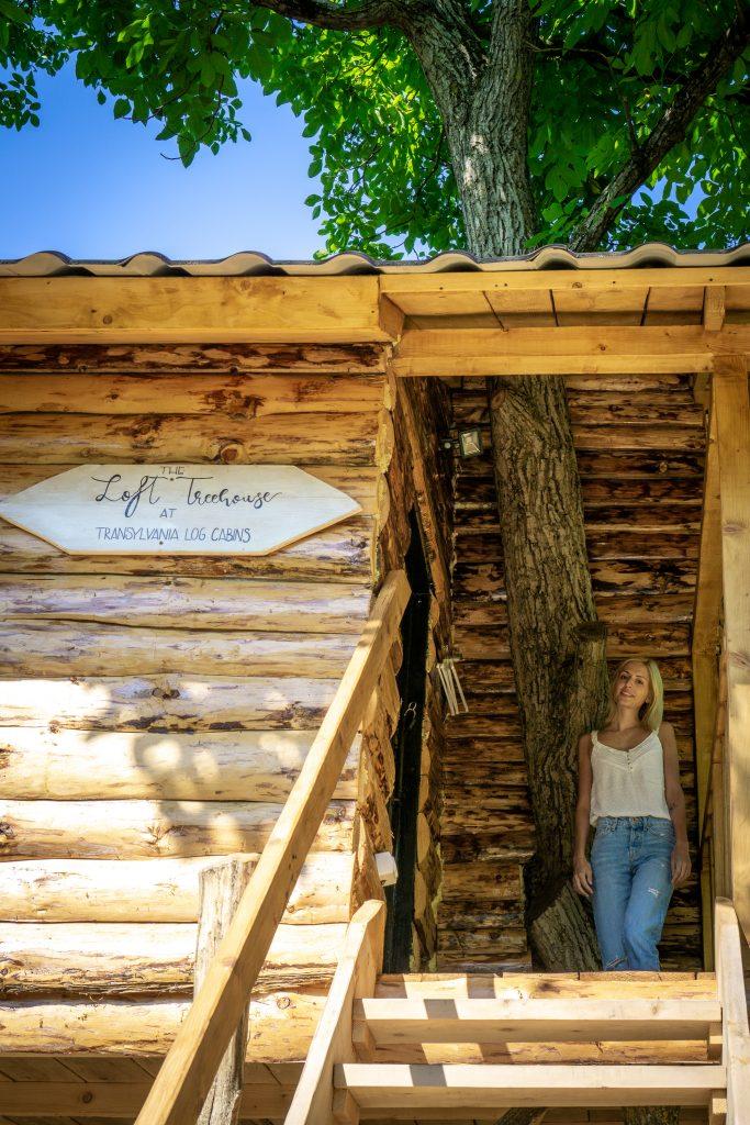 The Loft Tree House intrare Transylvania Log Cabins