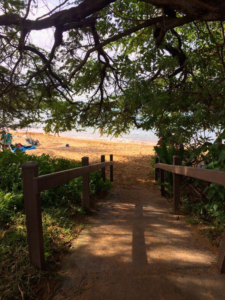plaja Ulua Maui Hawaii SUA
