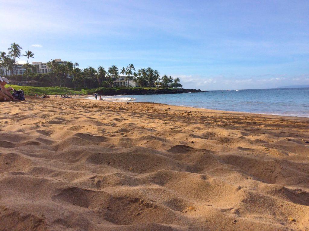 plaja exotica Ulua Maui Hawaii SUA